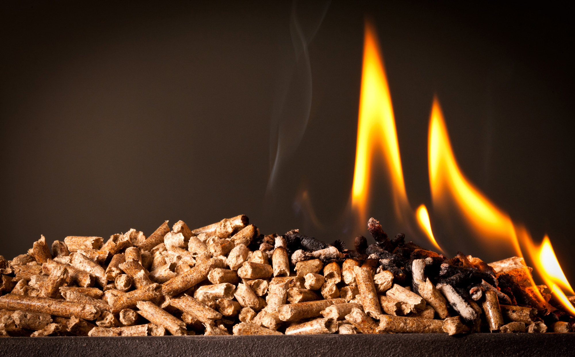 burning-wood-pellets-downsized